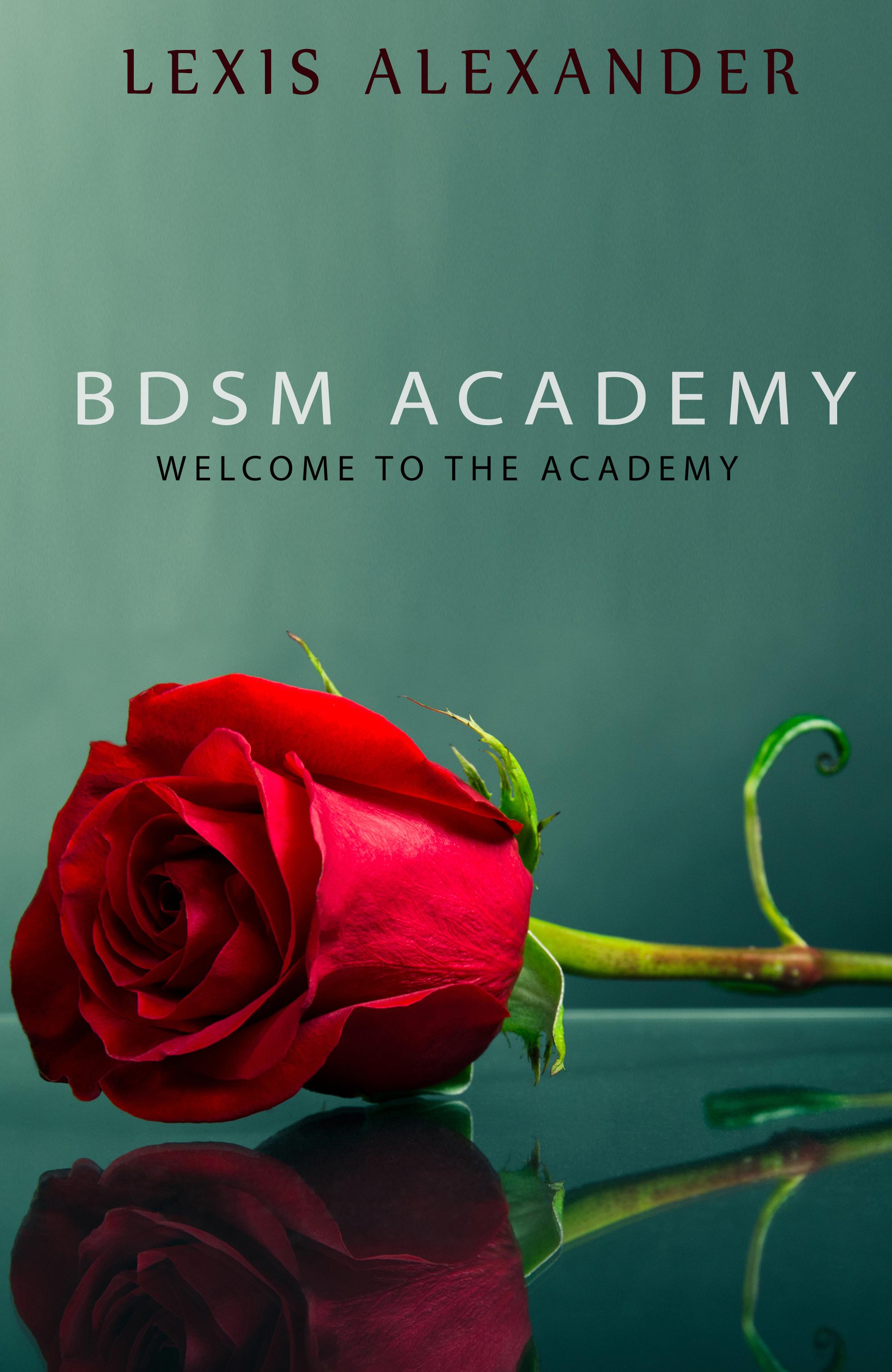 BDSM Academy